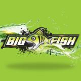 bigfish graphics getfishing online fishing tournament sponsors